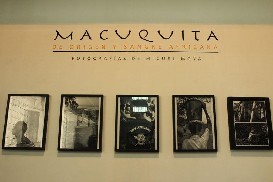 Macuevita6