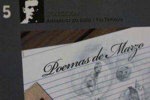 Pio Tamayo(1)