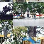 Plaza Bolívar de Caracas: Ágora y escenario de nuestra historia